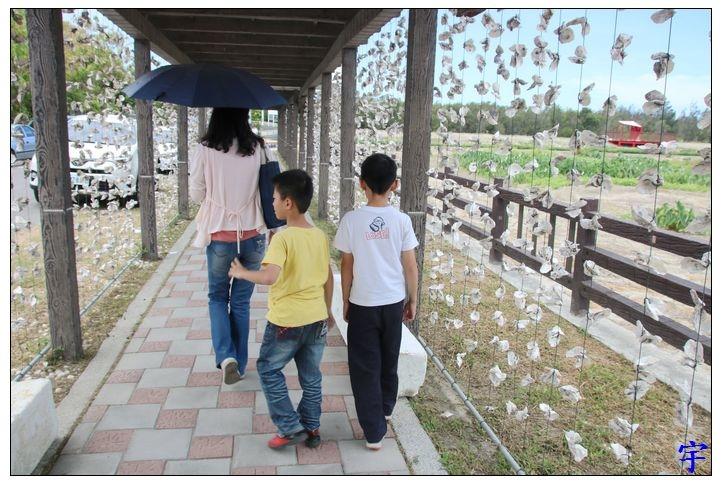東石自然生態展示館 (2).JPG