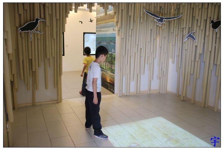 東石自然生態展示館 (10).JPG