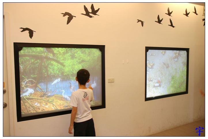 東石自然生態展示館 (11).JPG