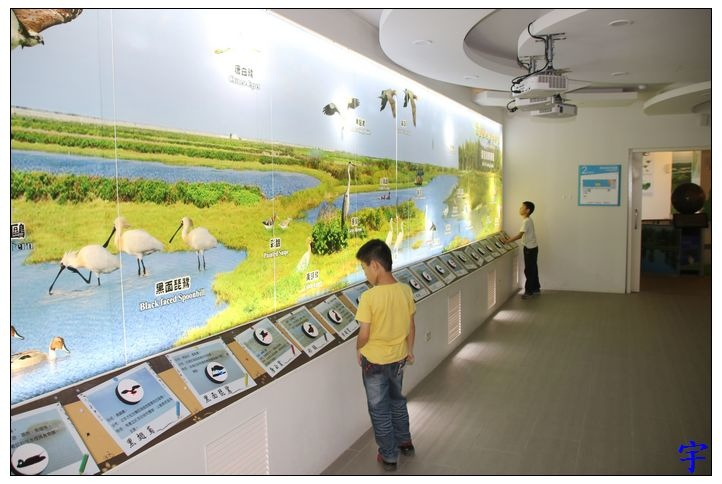 東石自然生態展示館 (16).JPG