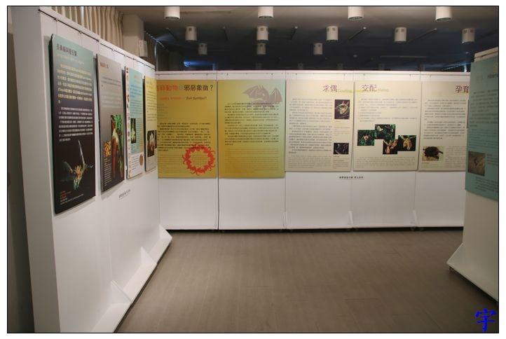 東石自然生態展示館 (21).JPG