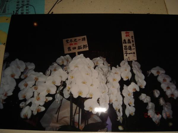 2005年日本SHOCK行