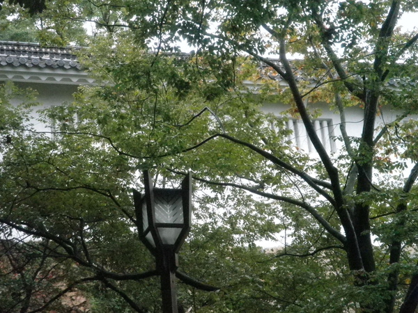 燈 好日本