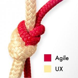 agile-ux1-300x300