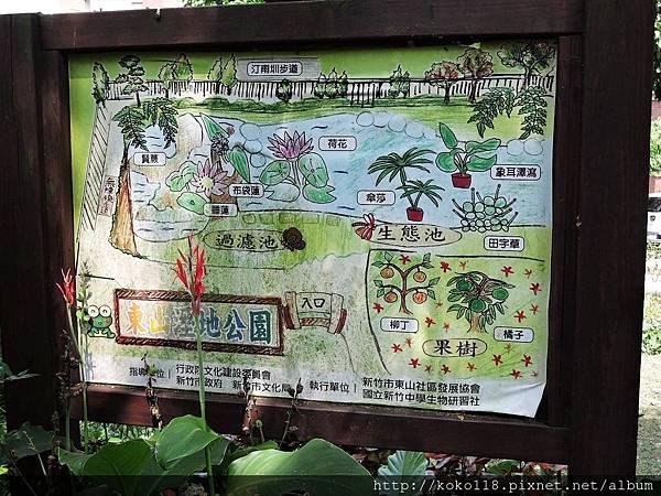 106.5.7 東山濕地生態教學公園1.JPG