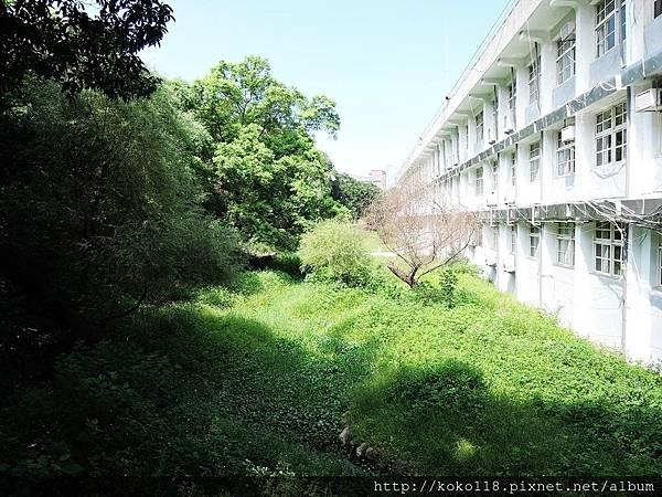 106.7.23 新竹高中-生態池.JPG