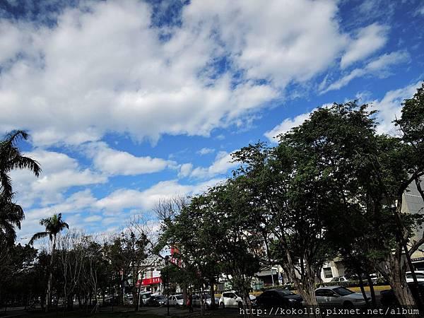 107.1.21 新竹綠園道-天空.JPG