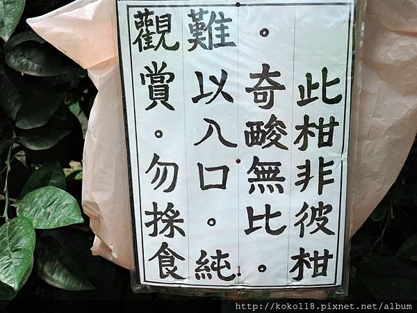 107.7.7 博愛小憩-虎頭柑告示板.JPG
