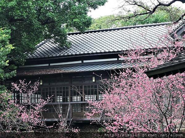 108.3.10 新竹公園湖畔料亭5.JPG