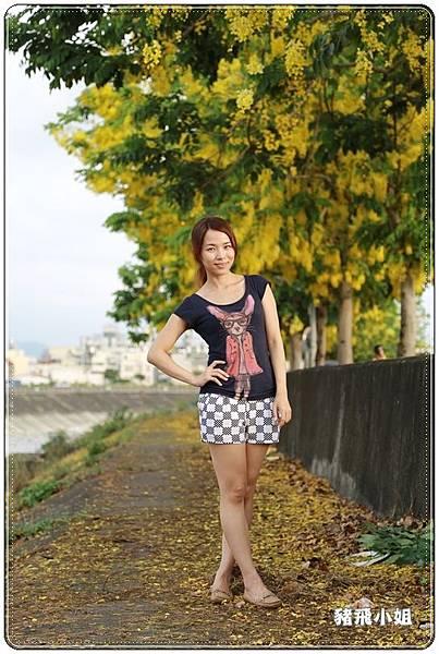 台中‧旱溪阿勃勒 (21).JPG