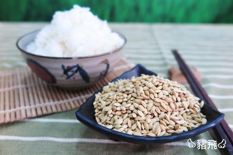 第一稻米倉 (39).JPG
