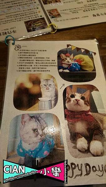 20160301公館貓店_9620.jpg