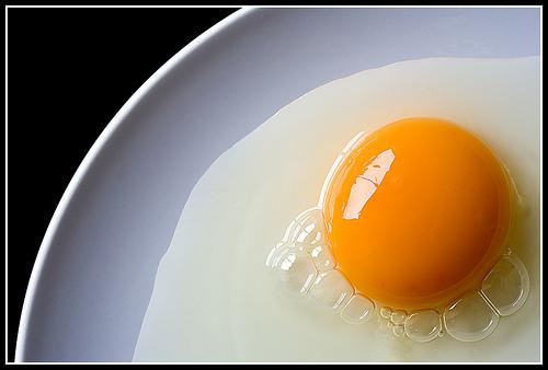 egg.bmp