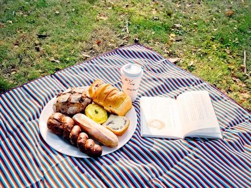 歌林-野餐布
