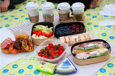 歌林-野餐必備水果盒