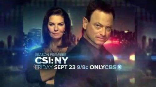 CSI: NY S8