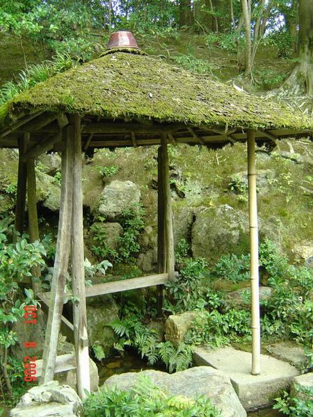 金閣寺 5