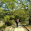 前往銀閣寺的林蔭小徑