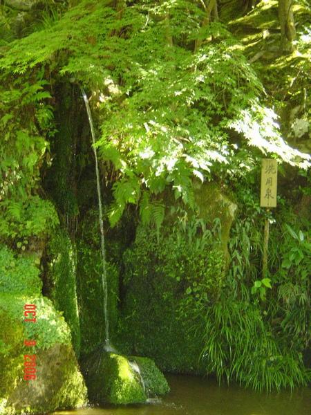 銀閣寺 12