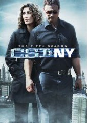 CSINY5s.jpg