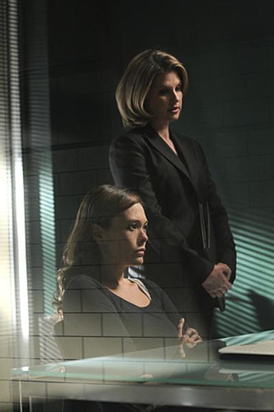 CSI: NY, 7.15 Vigilante