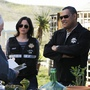 CSI, 11.16 Turn On, Tune In, Drop Dead