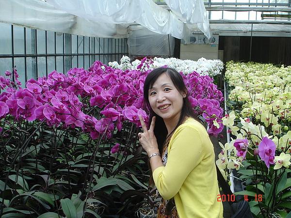 2010年4月17-18日新竹原燒+宜蘭太平山旅行 059