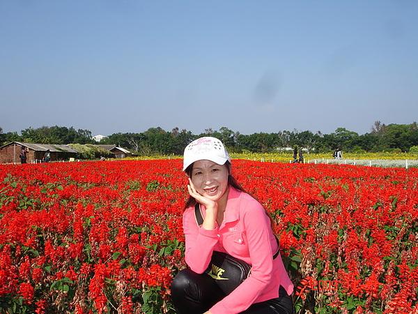 200912月南投員林新社之旅+雪山雪景 051