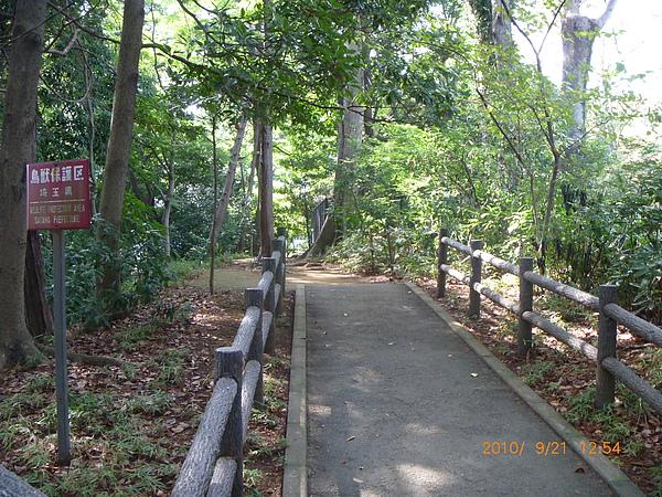 川越風景 330.jpg