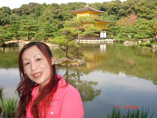 我是住在金閣寺的美人