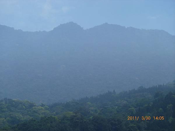 南庄高山青農場P1020227.JPG
