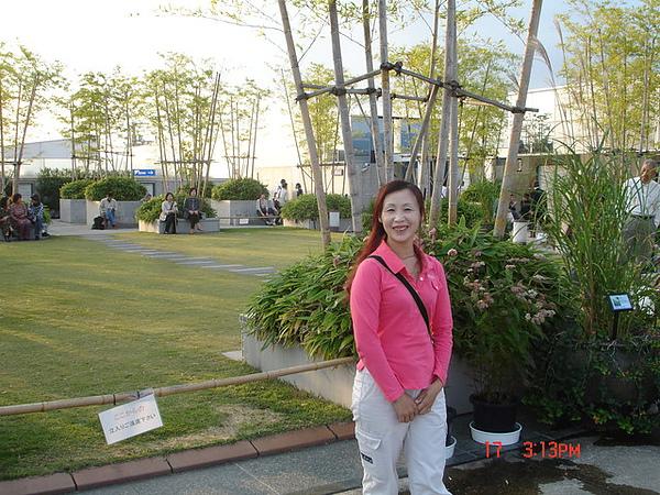 京都火車站上的庭園景觀
