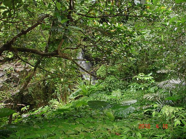 2010年4月17-18日新竹原燒+宜蘭太平山旅行 056