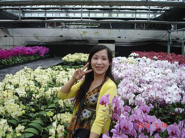2010年4月17-18日新竹原燒+宜蘭太平山旅行 061