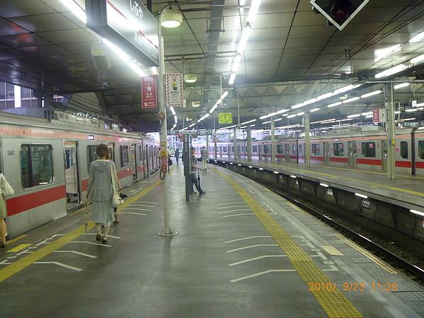 東京風景 532.jpg