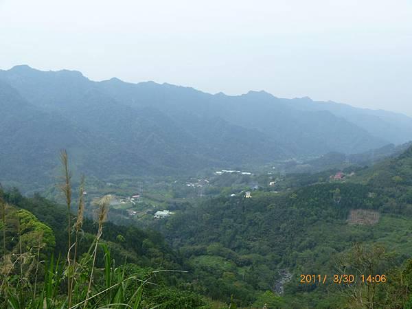 南庄高山青農場P1020229.JPG