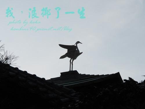 IMG_0080blog