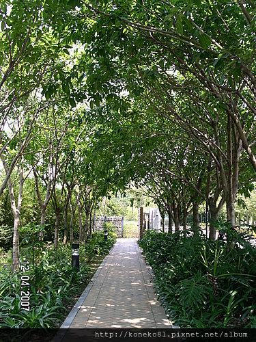 濕地公園 (3).JPG