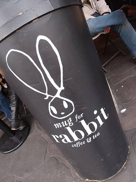 新沙洞 rabbit