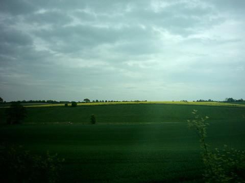 往呂貝克的路上~ 那個黃色的話好像油麻籽花~很美ㄋㄟ