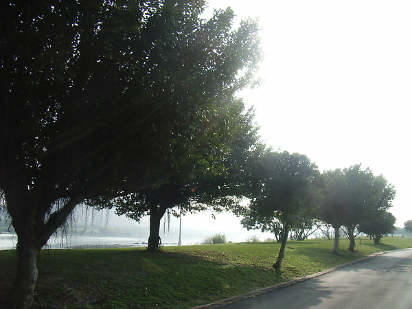 河濱公園大暴走 發現 這裡很像紐約中央公園