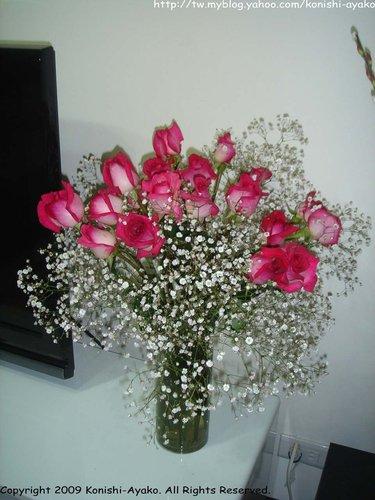美美的玫瑰花.jpg