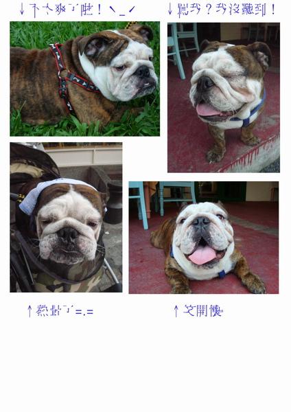 boss百變臉_ok1.jpg