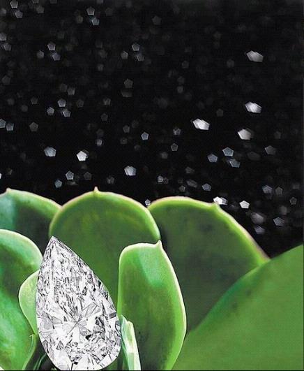 顏色D、淨度IF的梨形鑽石吊墜重33.31克拉。估價約1億2732萬元.jpg