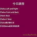 Salsa介紹.009.jpg