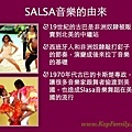 Salsa介紹.004.jpg