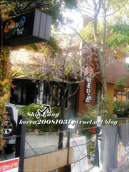 咖啡王子1號店