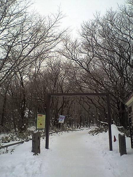 漢拏山雪景步道.jpg