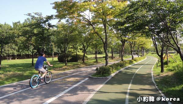 韓國首爾五天四夜自由行 Day2.一山湖水公園-自行車車道.jpg