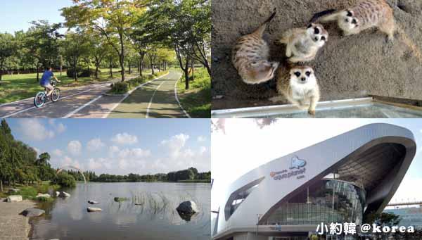 韓國自由行- Ilsan Lake Park一山湖水公園,小動物園,水族館首爾京畿道.jpg